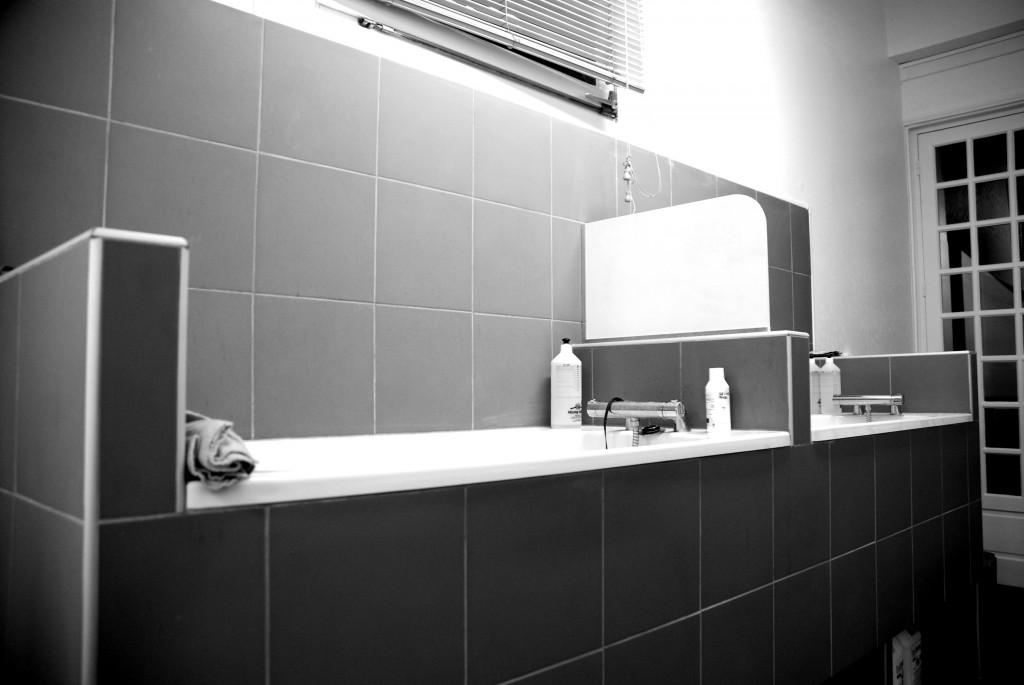 Notre salon de toilettage au comptoir des quatre pattes for Salon de toilettage paris