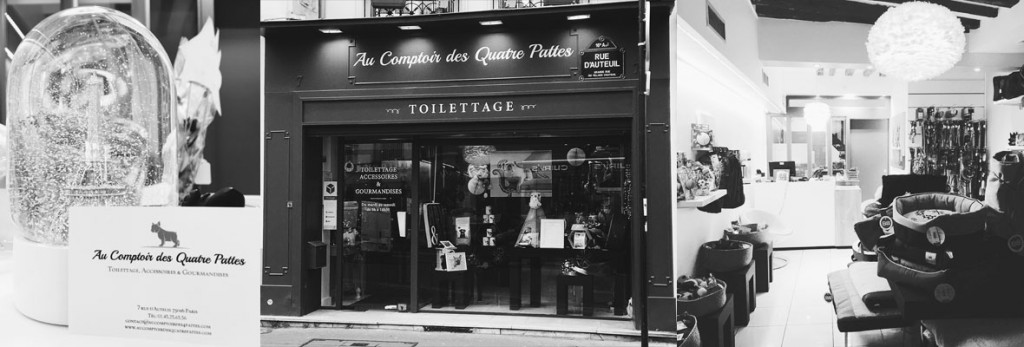 presentation-toilettage-paris